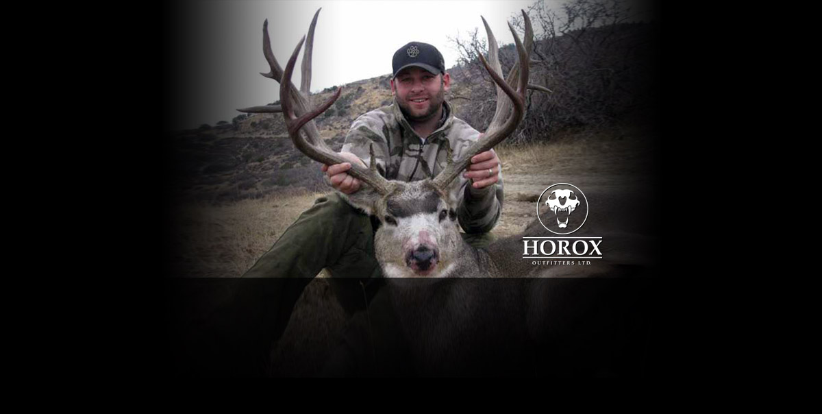 Horox Ltd Cow Elk